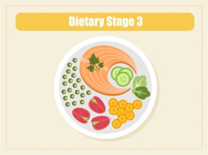 Dietary Guidelines 3
